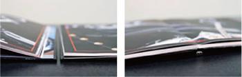 Panoramic Book Systemについて